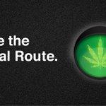 Cannabis NB Twitter Photo