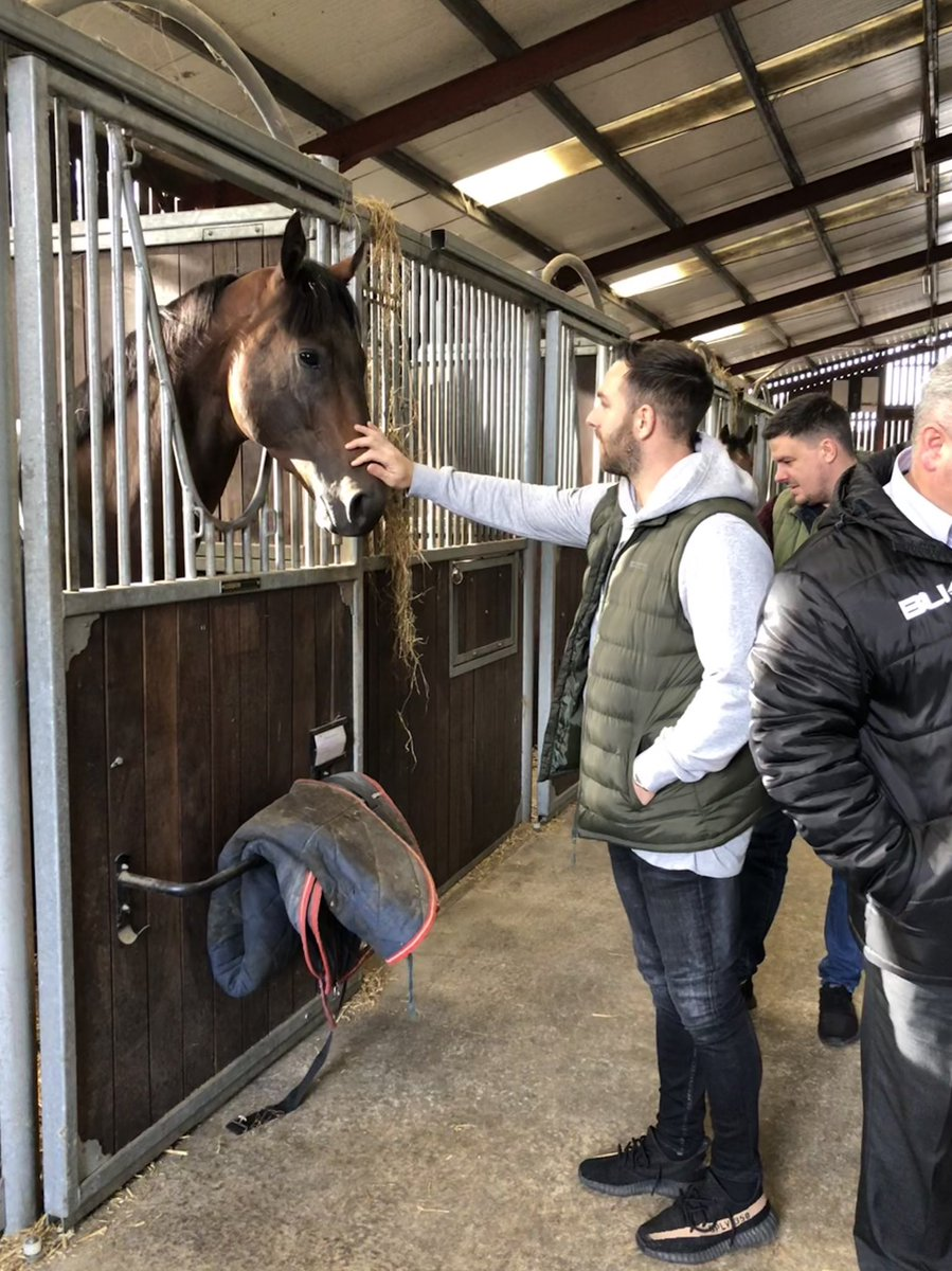 Great to have @snozzer_gale @hallyboy03 @markflyingfutu1 in the yard this morning. They got to catch up with some of the yard favourites - Sands Of Mali, Mr Lupton & Space Traveller. Exciting times ahead for @SportForGood1