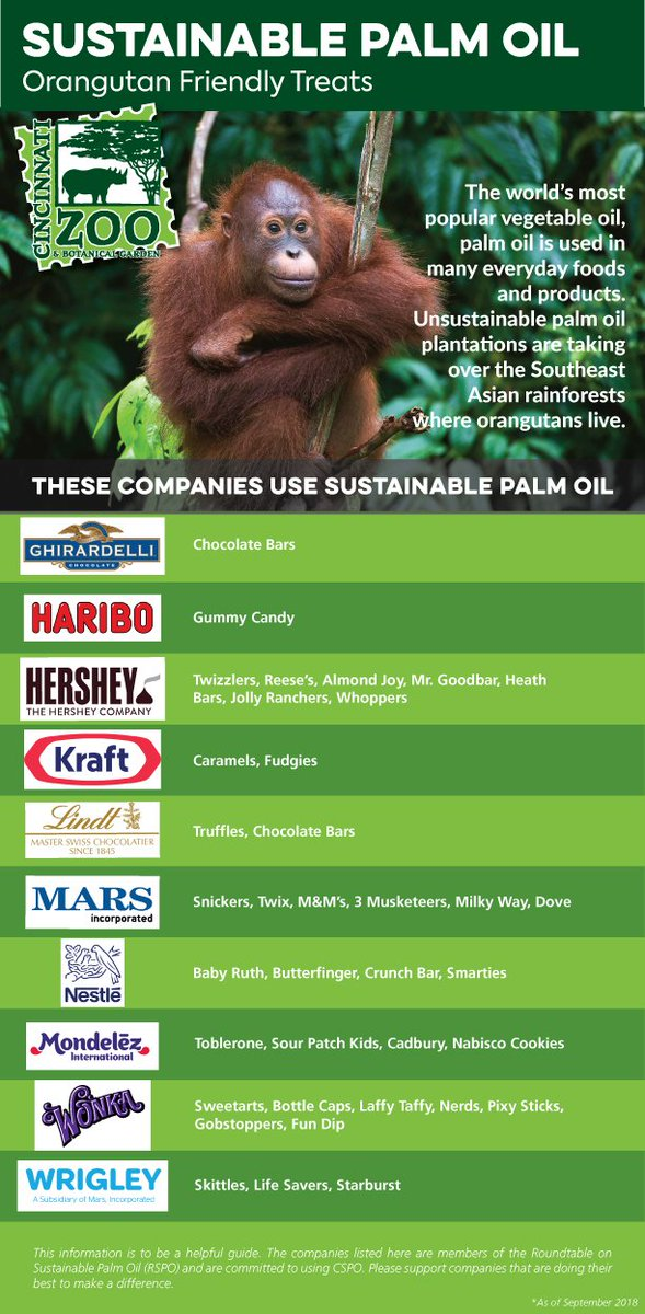 While purchasing #Halloween candy this year please support companies that use sustainable palm oil which helps protect the natural habitat of orangutans and many other species. Click here to look up other companies: ow.ly/AOmo30mcWJi 🍬🍫🍭🎃👻