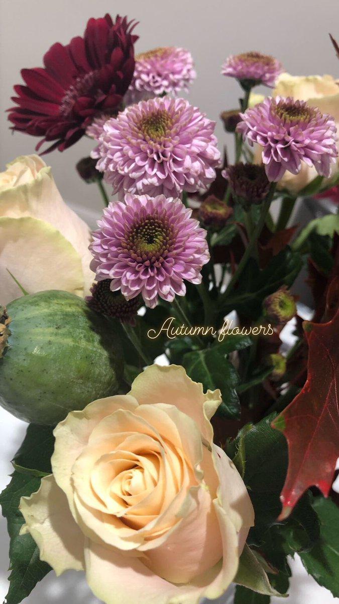 Flowers Hashtag On Twitter