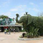 Image for the Tweet beginning: San Diego Zoo Global has