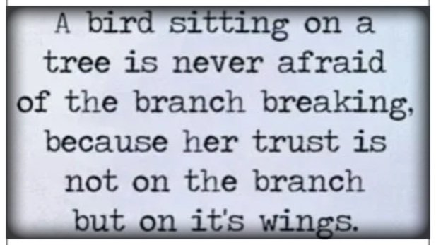 ...because her trust is not on the branch but on it&#39;s wings... #ThursdayThoughts #quote<br>http://pic.twitter.com/evsh4Rs0up
