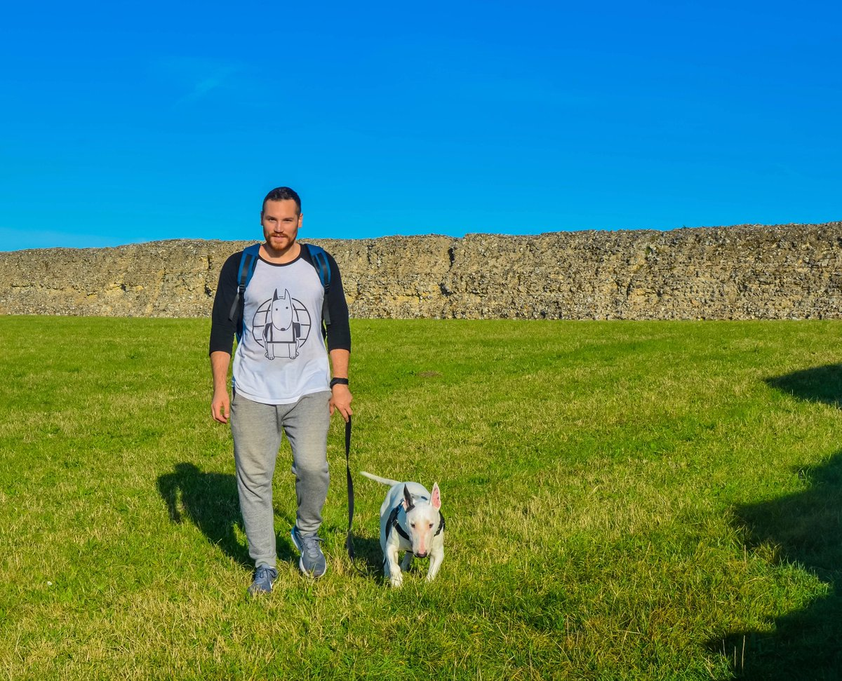 Guys! Our new t-shirt is now available at  http:// shop.rockythetraveller.com  &nbsp;  ! Check it out! . . . #bullterrier #traveldog #dogtravel #dogmodel #bullterriers #dogsoftwitter #dogsofinstagram #doggo #puppers<br>http://pic.twitter.com/P6U5ekCWCd