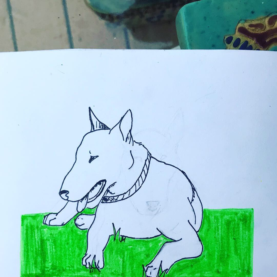 I did some cute #bullterrier sketches  <br>http://pic.twitter.com/QIbJ6ZcM6m