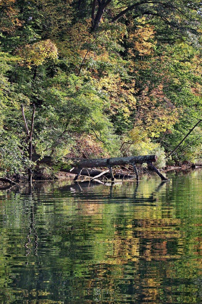 Along the canal in Seneca Falls (photo)