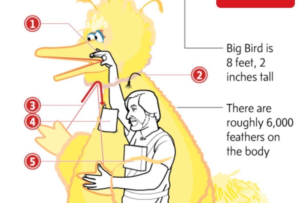 Crazy to think this is how all birds work