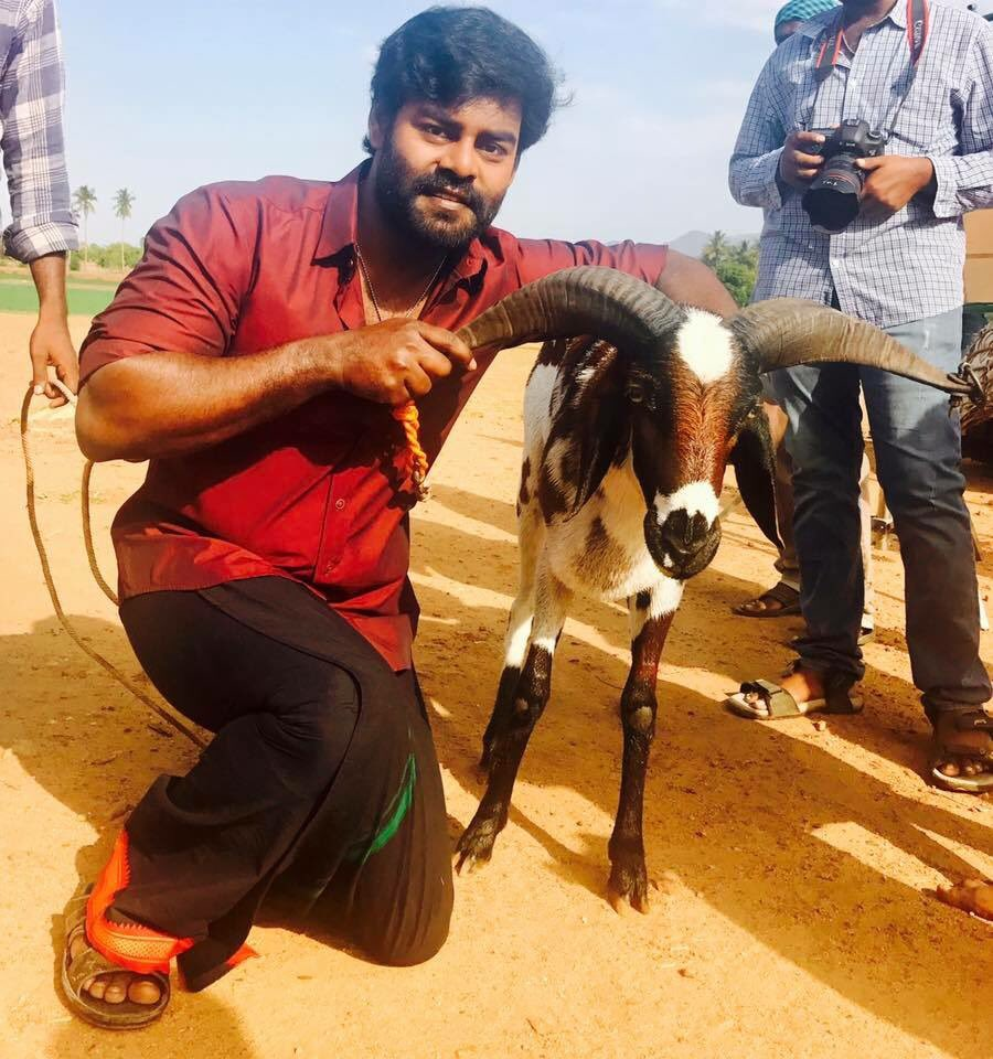 #BillaPandi Team Wishes You A Happy Vijayadasami <br>http://pic.twitter.com/SOTGBujs2I