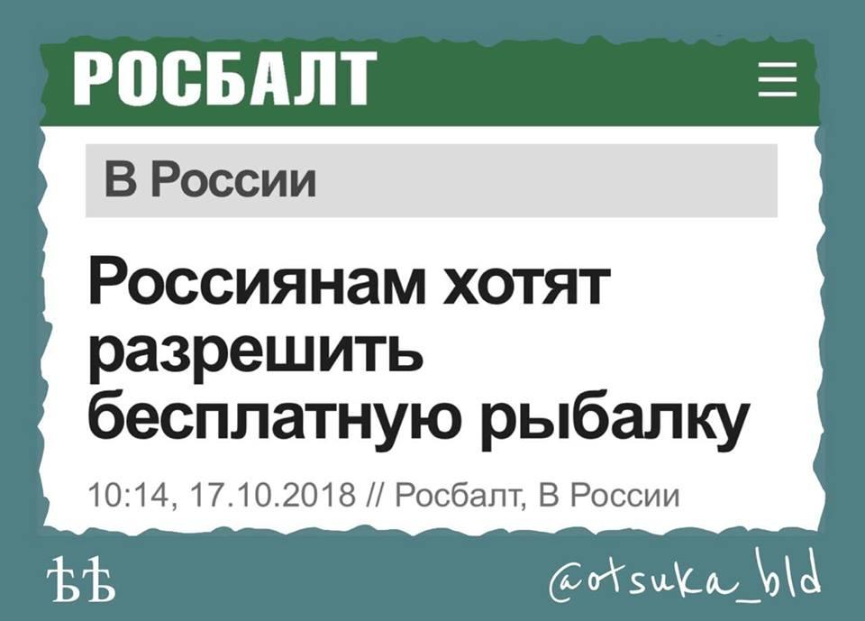 """""""Несете в своем ролике какую-то ахинею о Порошенко. Да у вас внуки учатся в Англии! Непонятно на какие деньги"""" - Навальный ответил Золотову и рассказал о недвижимости его семьи - Цензор.НЕТ 6416"""