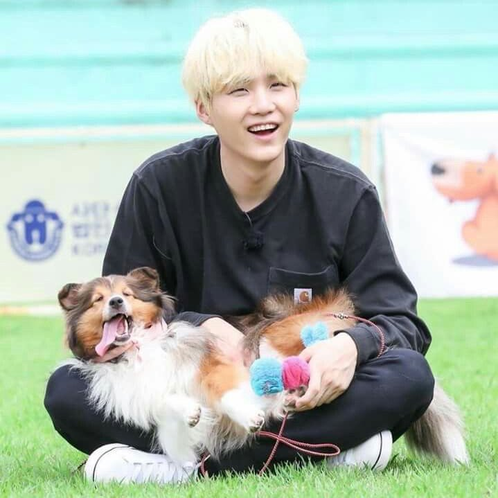 I WANT SOMEONE TO LOVE ME AS MUCH AS YOONGI LOVES DOgs <br>http://pic.twitter.com/rnaU0QJg57