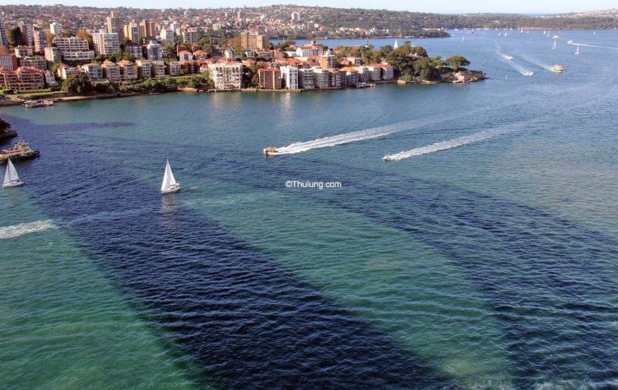 Sydney Harbour - Only Sydney