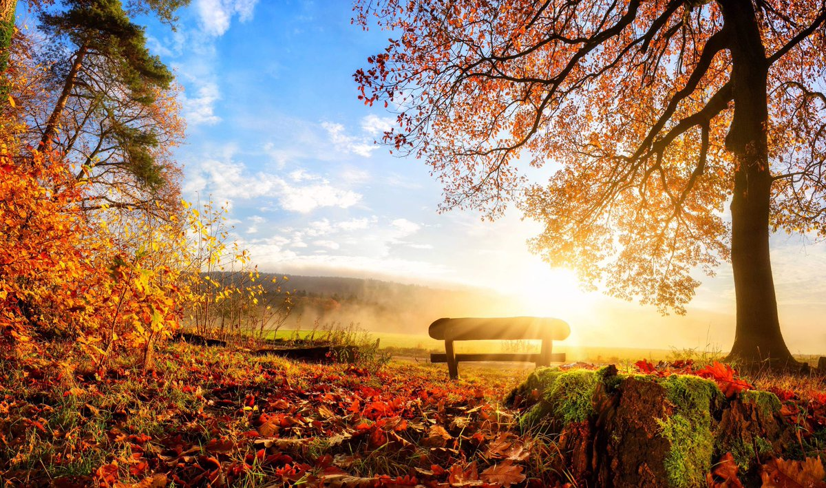 &quot;I am not sure that I want to build a hut. For it will mean putting walls and a roof between me and the rocks and the sky. And who wants that on an afternoon in autumn when there is still a bit of heat in the sun and the wind is warm and caressing?&quot;~C.R.Milne #ThursdayThoughts <br>http://pic.twitter.com/HFae2sUEe2