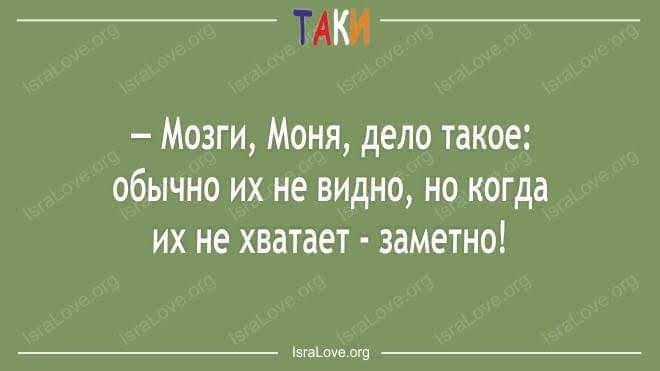 Запрет на доступ к данным телефона Седлецкой продлен на неограниченный срок, - решение ЕСПЧ - Цензор.НЕТ 862