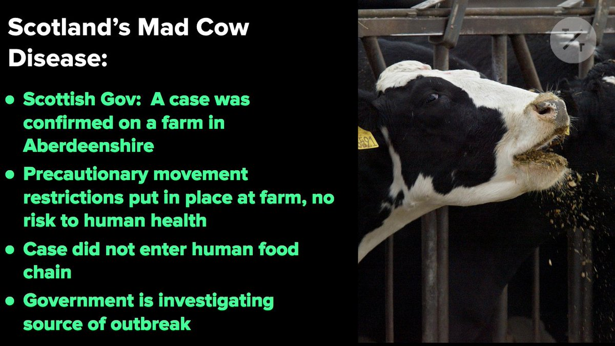 A case of mad cow disease has been confirmed on a farm in Scotland. Here's what we know so far: