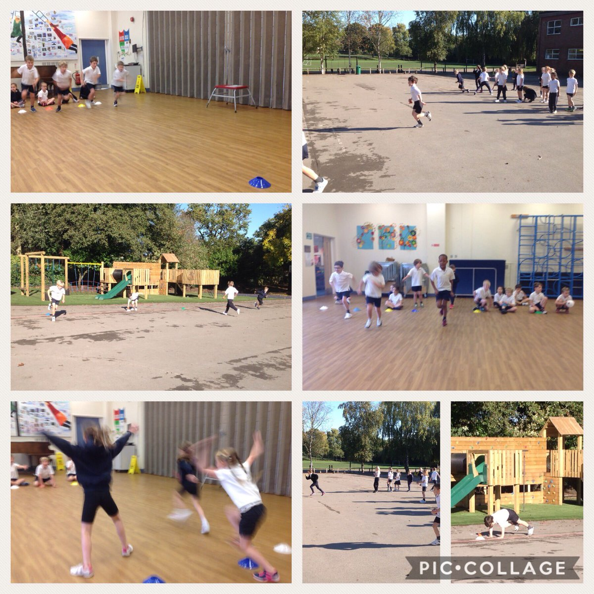 test Twitter Media - Great fun in the sun! #gorseype https://t.co/kyZTooIb1C