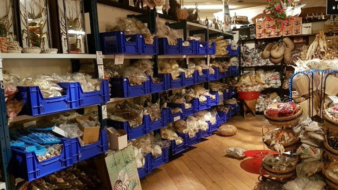 Dierenhandel kan helpen in strijd tegen wildlife crime https://t.co/wrTNnkejEp https://t.co/sWoBd2YWdK
