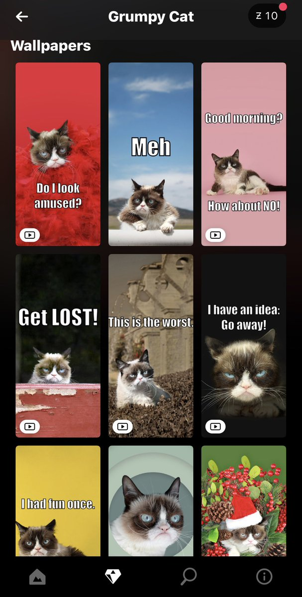 Grumpy Cat On Twitter Awful New Grumpy Cat Wallpapers Available