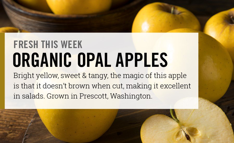 These apples are unlike any you'll ever taste! Sweet & crunchy, and they won't brown! Opal Apples are now in stores! https://t.co/0g5PUrsOaD