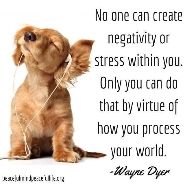A positive attitude may be the most valuable asset we own.