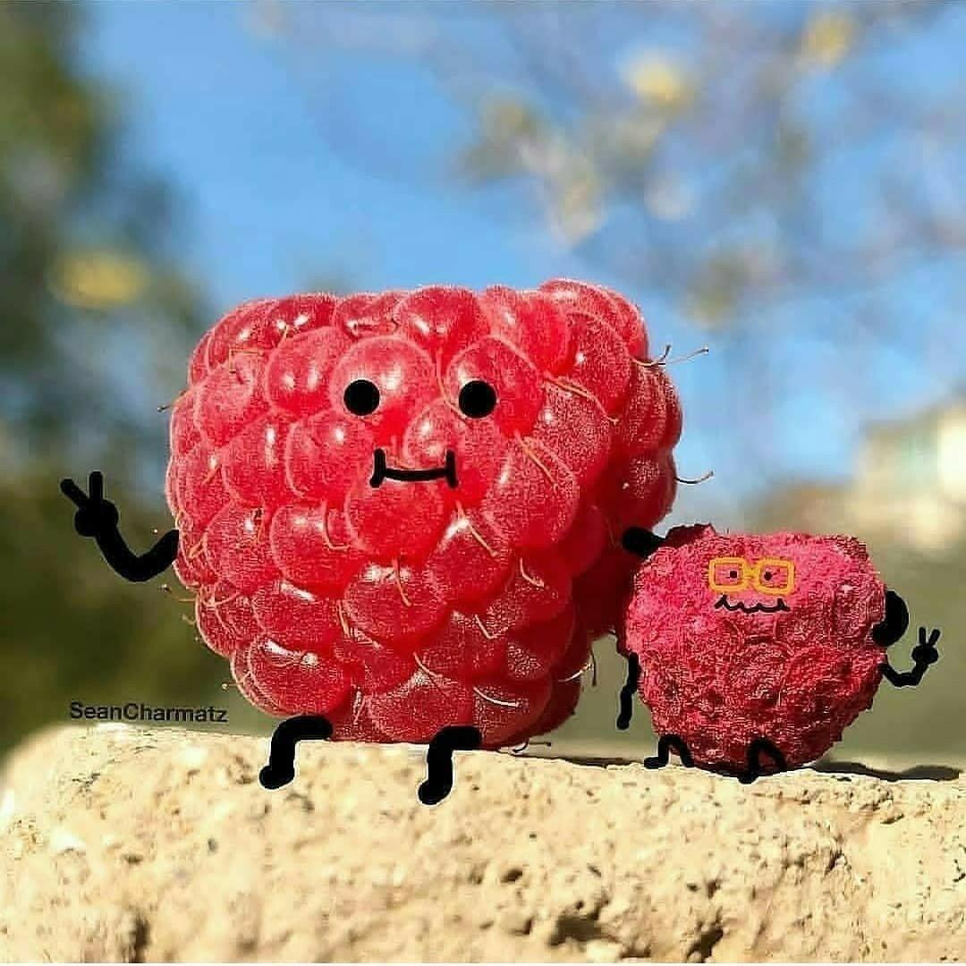 Смешные картинки ягоды, картинки