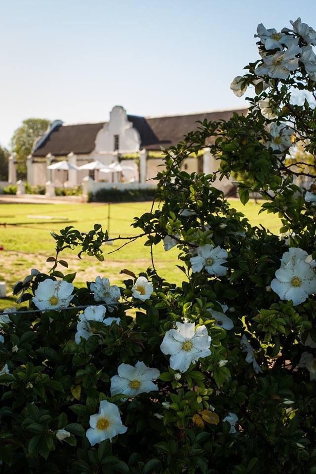 winefliestours photo