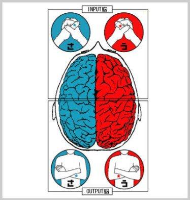 たった10秒でわかる、自分の頭の使い方診断!  手の組み方と腕の組み方だけでわかるので、一度やってみてはいかがでしょうか!
