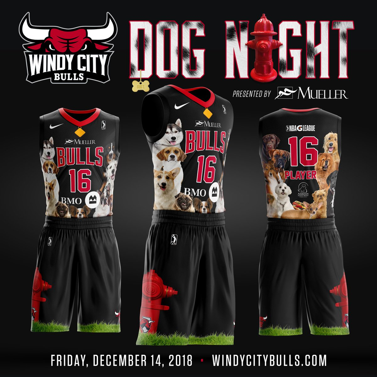 2e29608db55b Catch the Windy City Bulls in these paw-dropping uniforms. Jerseys will be  auctioned off benefiting @AndersonAnimal. Purchase your tickets and Pooch  Passes ...