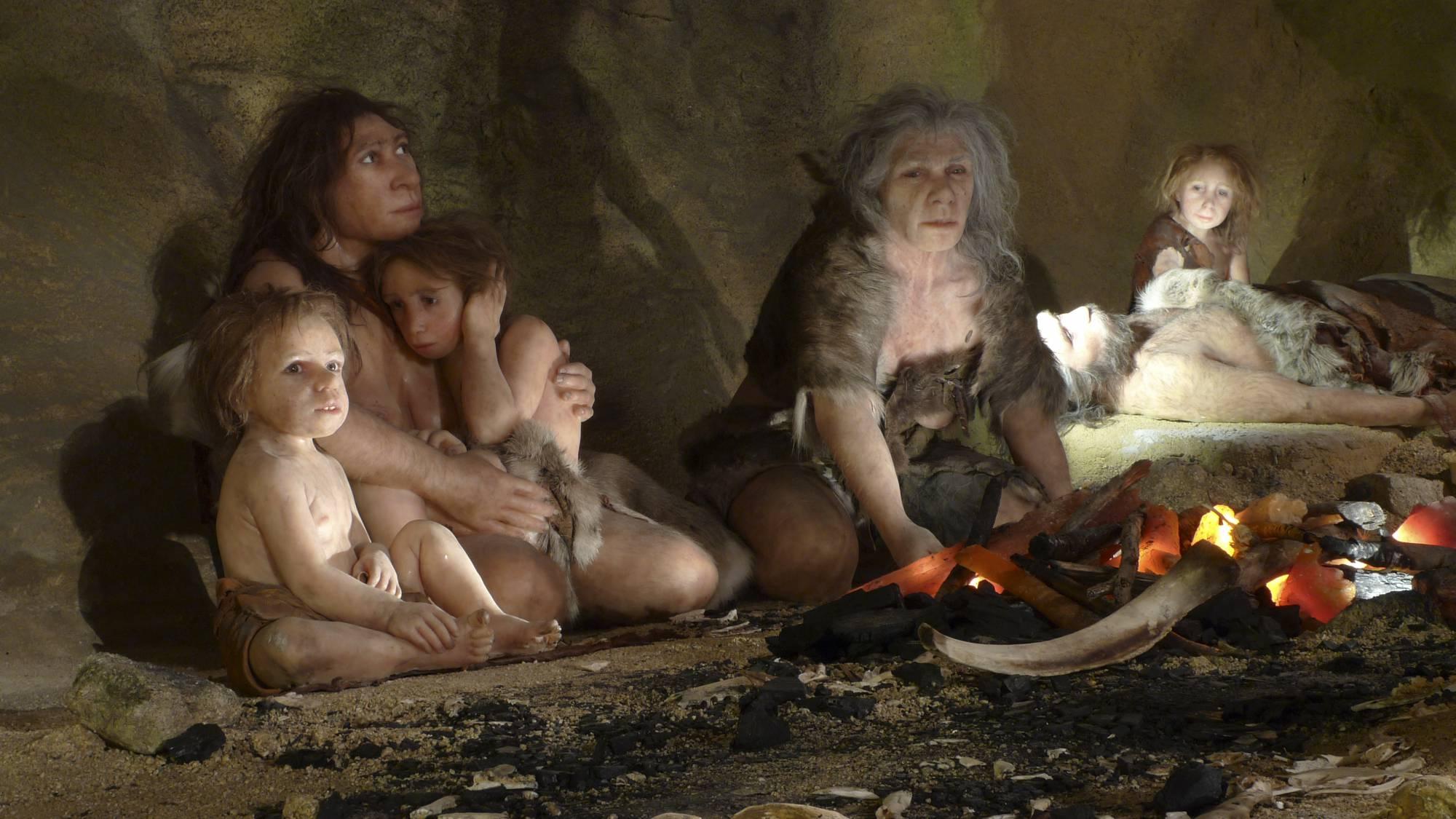 картинка неандерталец в пещере фильма побывали