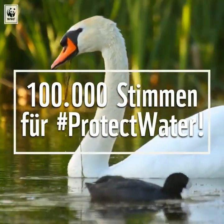 Dankeeee! Schon 100.000 EU-BürgerInnen haben ihre Stimme für unser Wasser und unsere Gewässer abgegeben. Ein starkes Zeichen an die @EU_Commission und @bmu, das Wasserschutzgesetz WRRL nicht aufzuweichen! #protectwater Mitmachen könnt ihr hier: https://t.co/OqsGSsOOIe