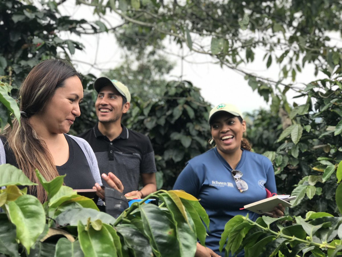 When you buy Bird Friendly® certified coffee, you support growers committed to conserving habitat for birds and other wildlife @smbc @peetscoffee You also fight the the environmental destruction reported by the @WWF report: bbc.com/news/science-e… #ornithology