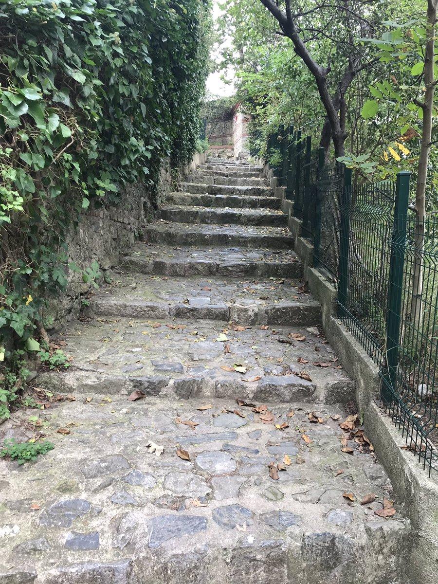 Kandilli Muhacir Sokağı ❤️ Taş ve doğal yeşil. Malzeme bizi etkiliyor