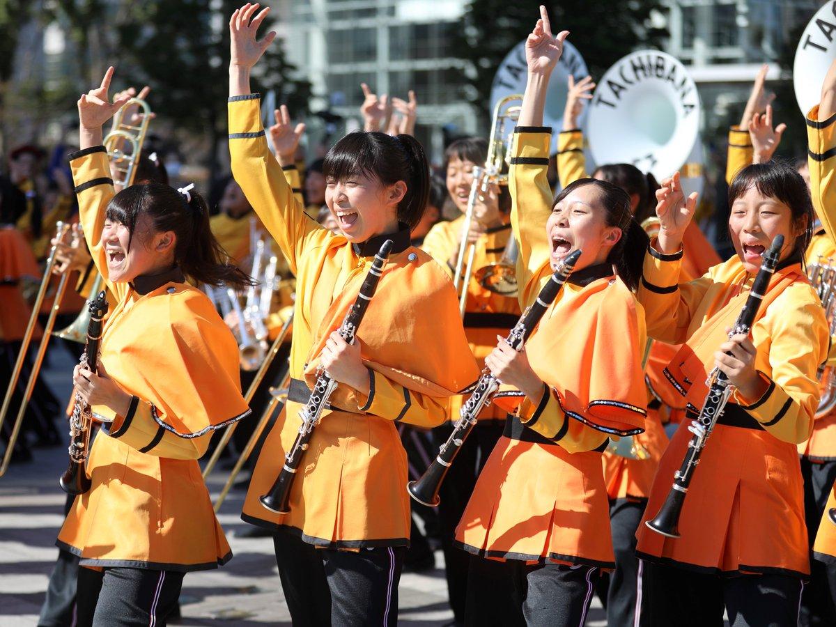 ローズ パレード 2018 京都 橘