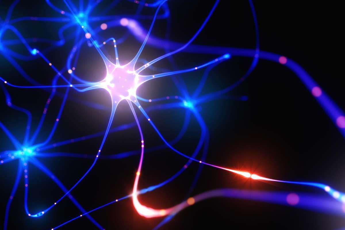 Your brain is like 100 billion mini-computers all working together https://t.co/QIffBv4LU7