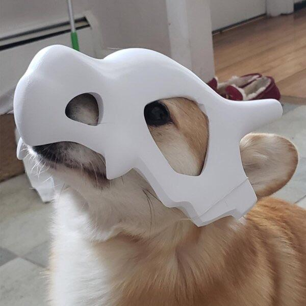 Corgbone used woof and it was super effective. https://t.co/jEVcQ4K7EO