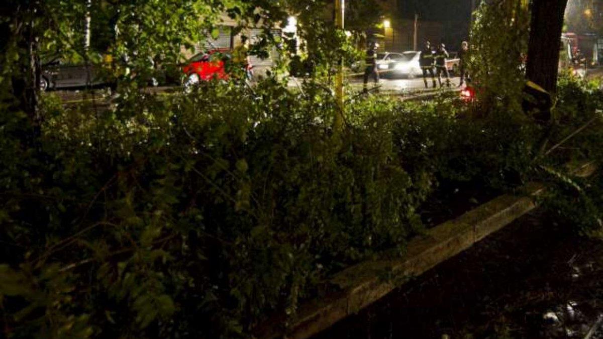 Maltempo, tromba d'aria a Milano: alberi caduti nell'hinterland  #Milano https://t.co/62KB4bzkGC