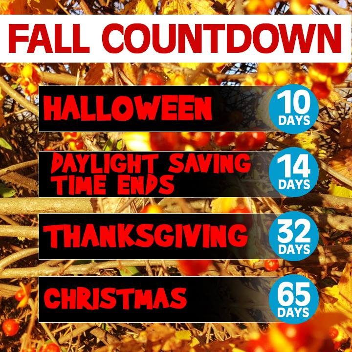 2018 COUNTDOWN: 65 days to Christmas! Are you ready? 🎃🦃🕎🎄