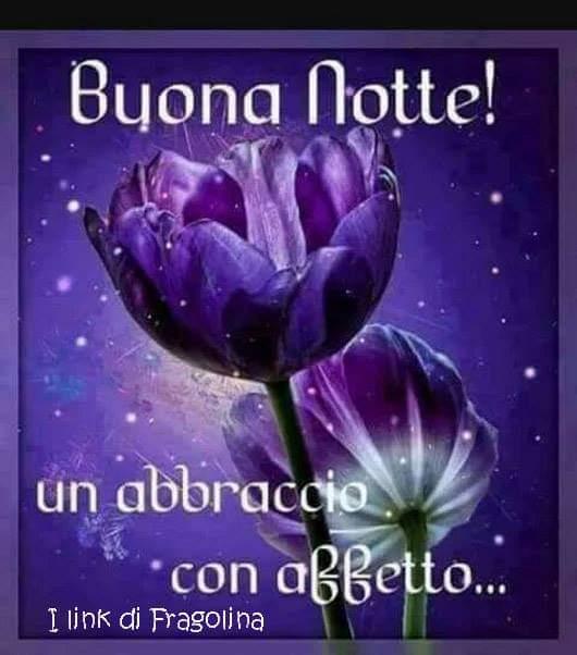 Piera Toninelli On Twitter Buona Serata Notte Anche A Te