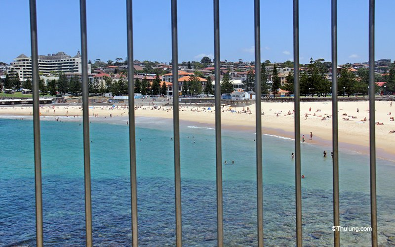 Coogee Beach from Dolphins Point