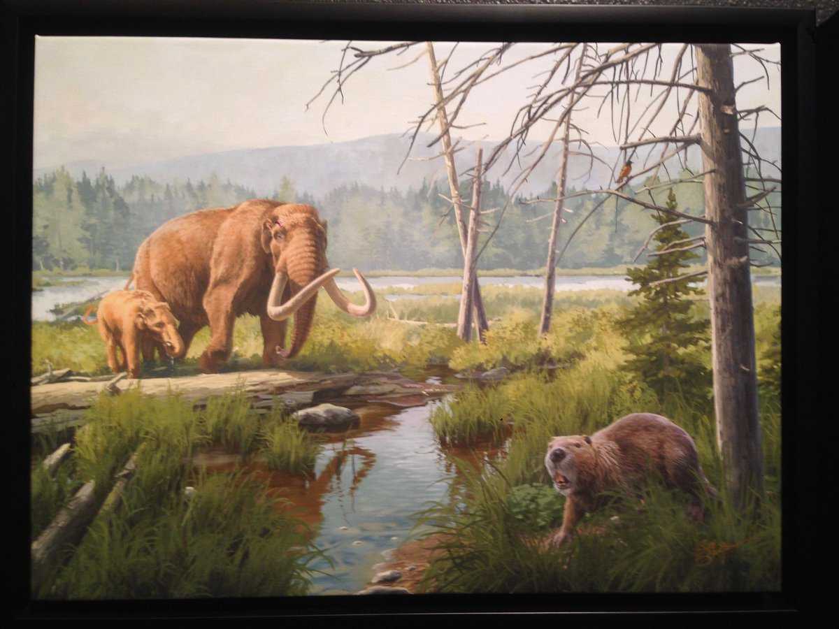 giant animals north america - HD2042×1039