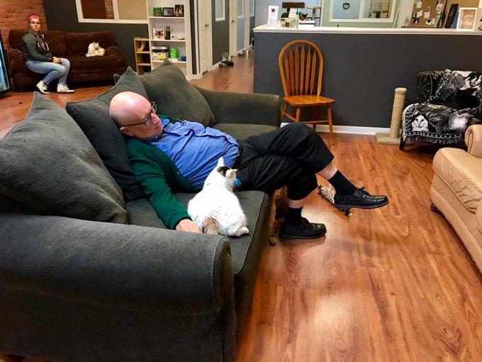 ソファーに座ったまま居眠りしてるおじいさん ネコは腕の間でくつろいでる