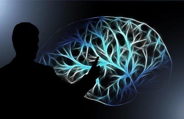 Кожна клітина людського мозку діє як мікрокомп'ютер