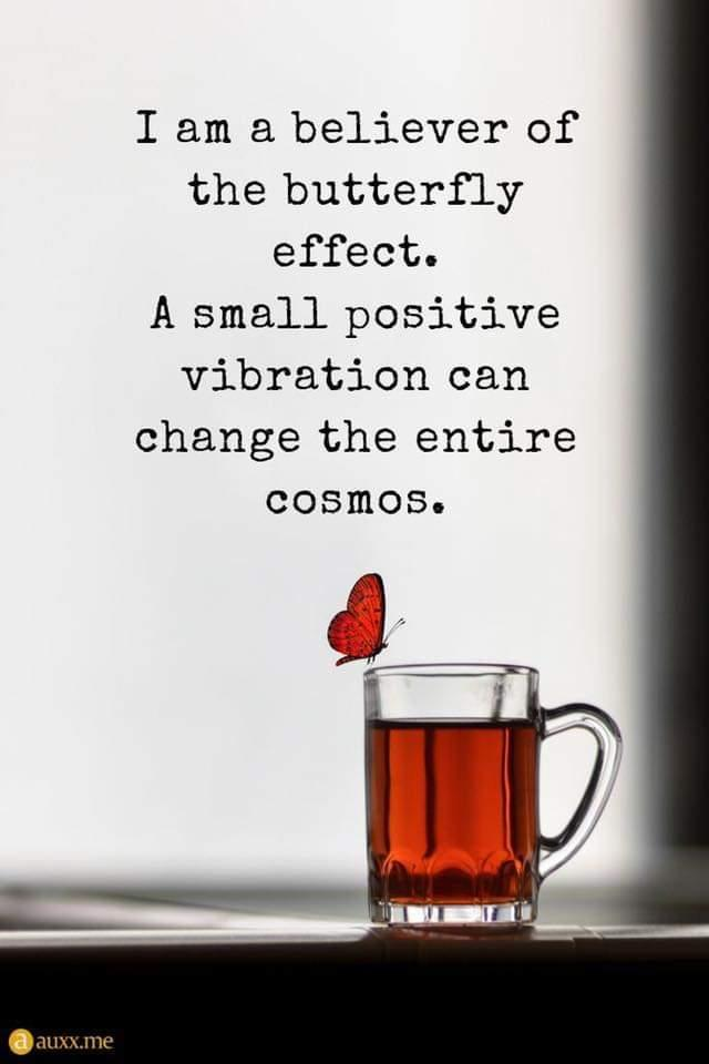 So what could a Million social aware butterflies do? Im listening what can we do together...#ACEAwareNation #homelessness #love #kindness @Prev_Justice @JohnCarnochan @JonslaterJon @karynmccluskey @glasgowcathcart @KeeganSmith_Law @princess_missy_ @vruscotland @DirectorVRU
