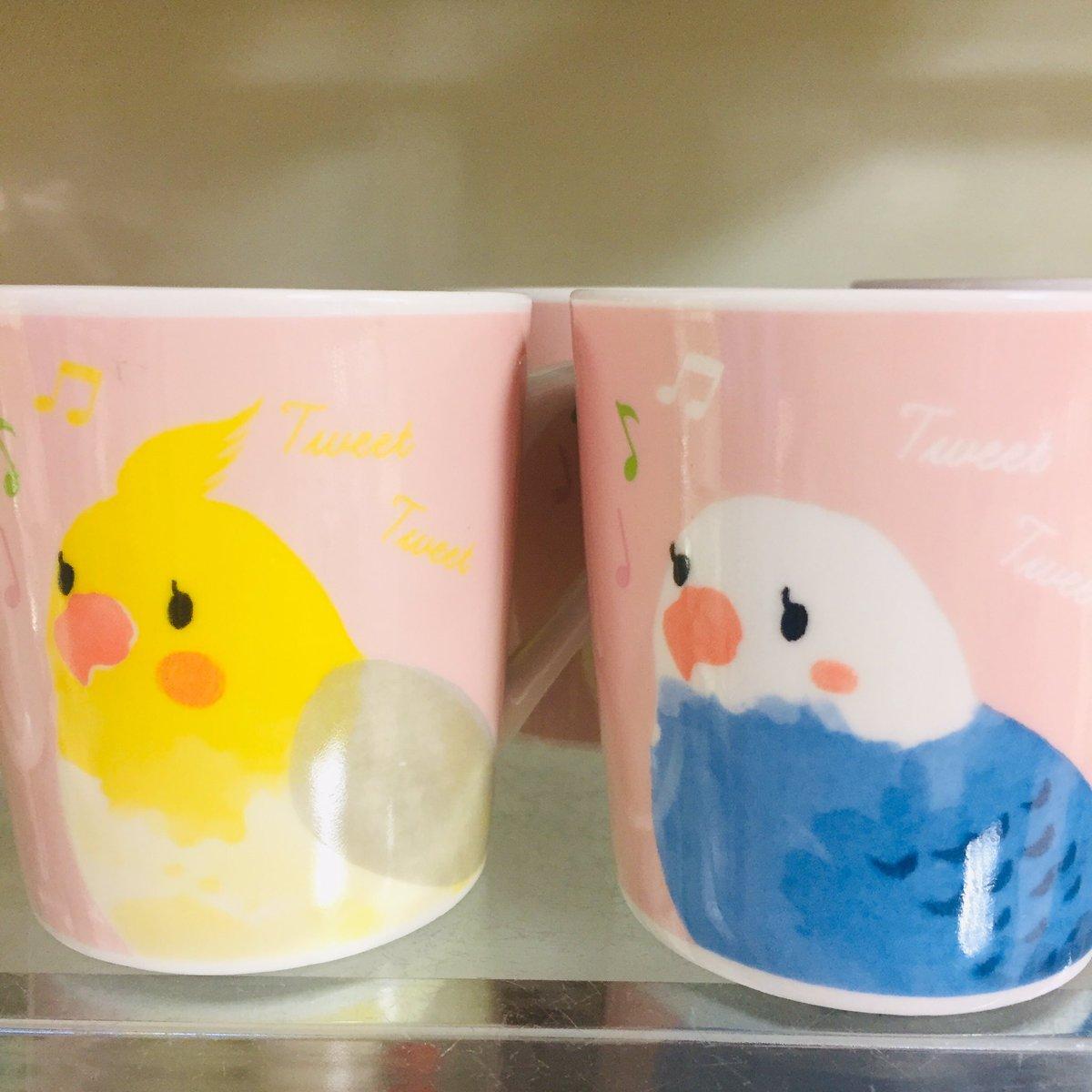 test ツイッターメディア - ダイソーでオカメインコちゃんとセキセイインコちゃんのマグカップ見つけました!! 100円でこのクオリティすごい。もちろん両方、オトナ買い?(*´∀`*)人(*´∀`*)?  #DAISO #インコグッズ #オカメインコ #セキセイインコ https://t.co/yHFLIedYJY