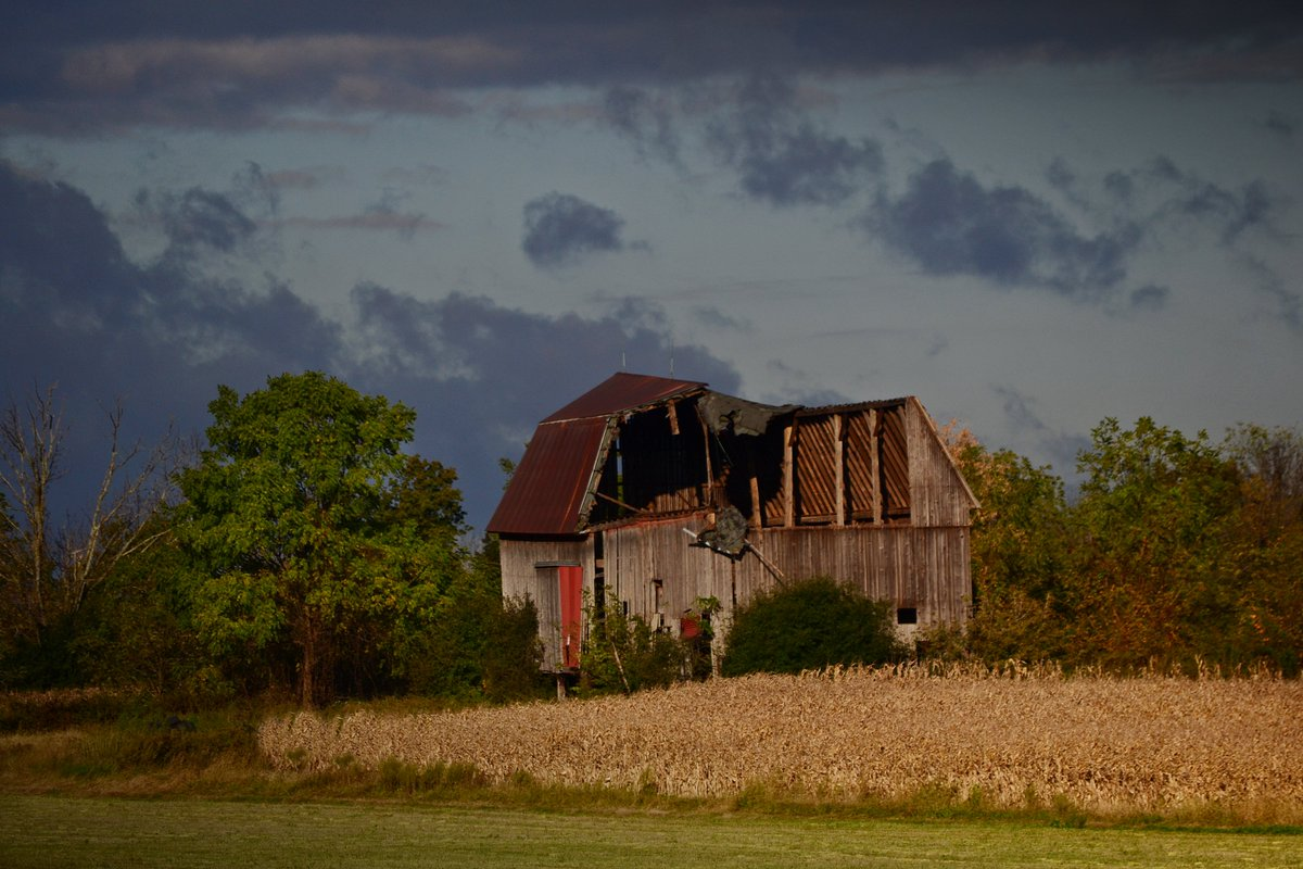 Barn falling with the season change (photo)