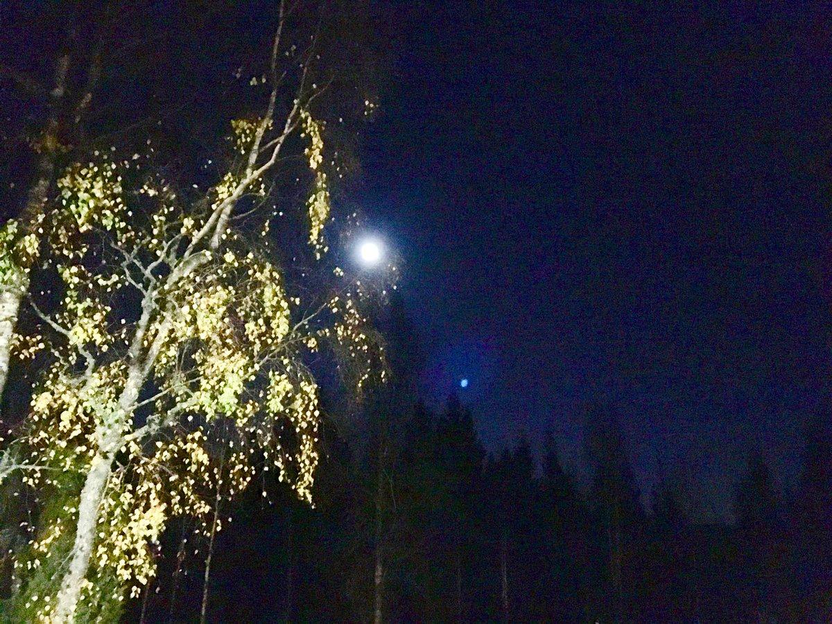 Lokakuutamo ja pakkasyö. #Finland #kerrostalopukeutuminen https://t.co/6LAbwkxNDW