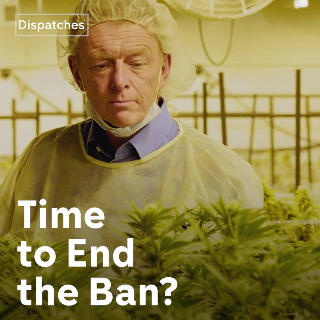 Cannabis: Time to End the Ban? 2019