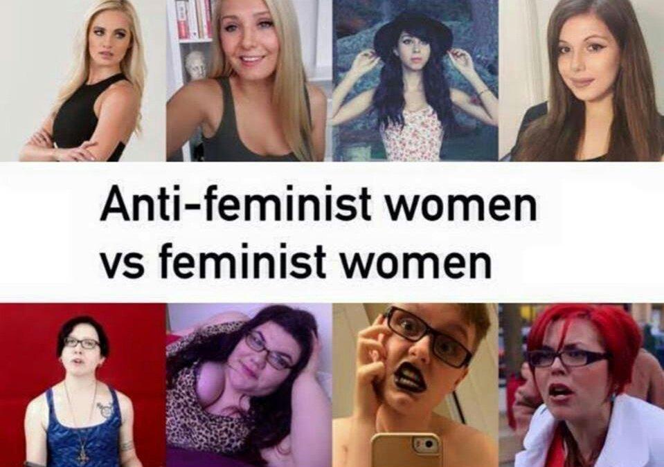 Anti Sjw Memes On Twitter