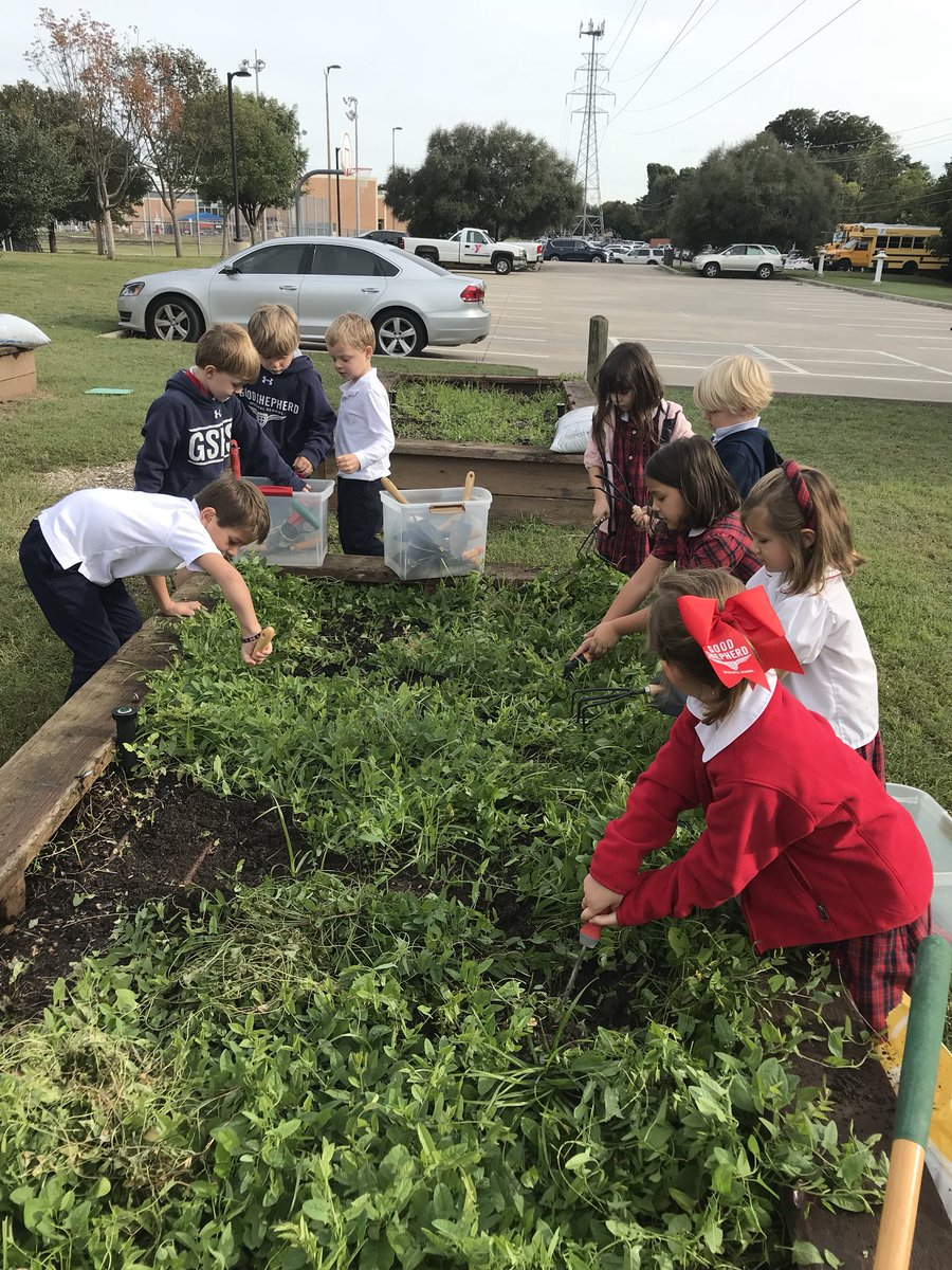 We are almost ready to plant our winter crop of onions, butter crisp lettuce and broccoli. @gsesdallaspic.twitter.com/Z7poqV68RW