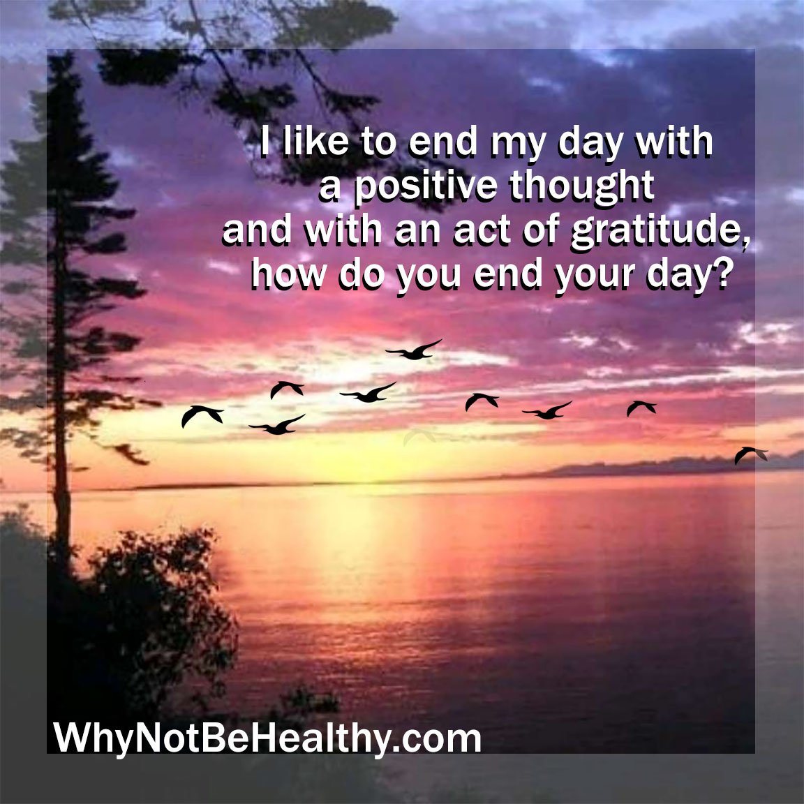 I love to end my day with a positive thought and with an act of gratitude, how do you end your day?