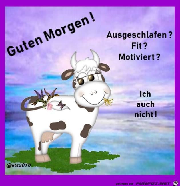 Baumers D On Twitter Guten Morgen Steffi Ein Schönen