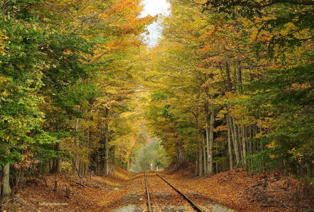 Fall view in Wayne County (photo)